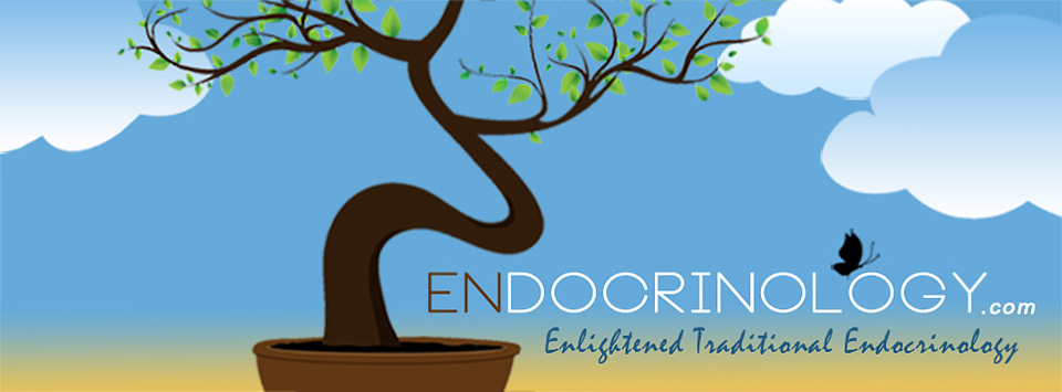 Zendocrinology – Enlightened Traditional Endocrinology